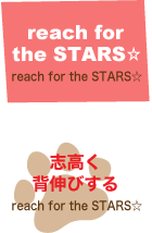 【 reach for the STARS☆ 】